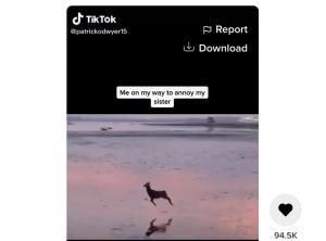 تیک تاک :آموزش دانلود کردن ویدیوهای تیکتاک در موبایل و کامپیوتر